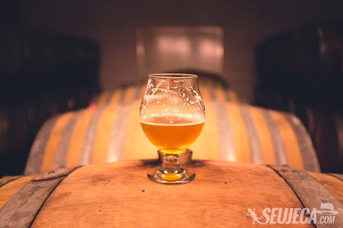 cervejas especiais para apreciar no inverno - seu jeca
