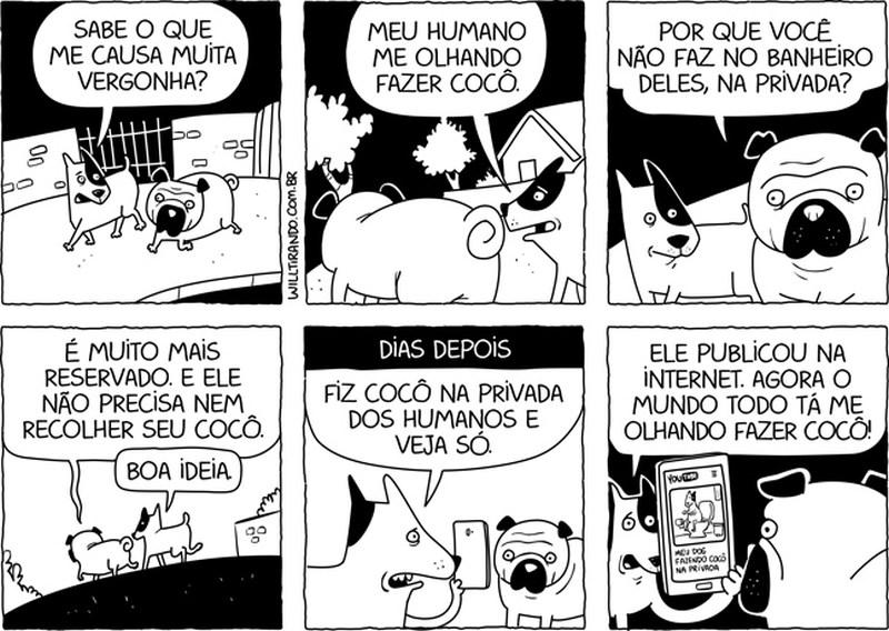 cachorro não tem privacidade