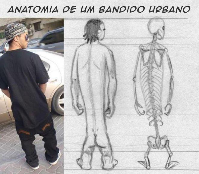 Anatomia de um bandido urbano americano