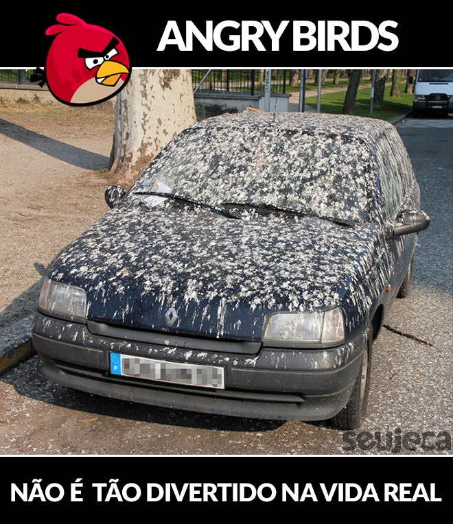 Angry Birds na vida real