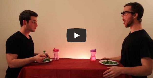 Como os animais comem a sua comida