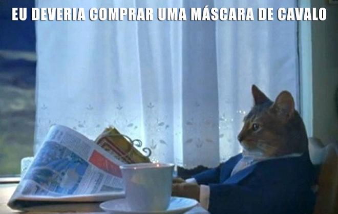 gato-sofisticado-5