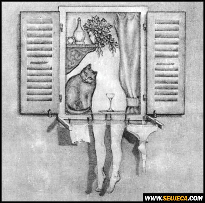 O que você vê nessa imagem?
